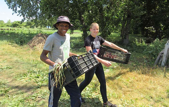 Youth Transferring Crops - Racine Area Youth Farm Corps